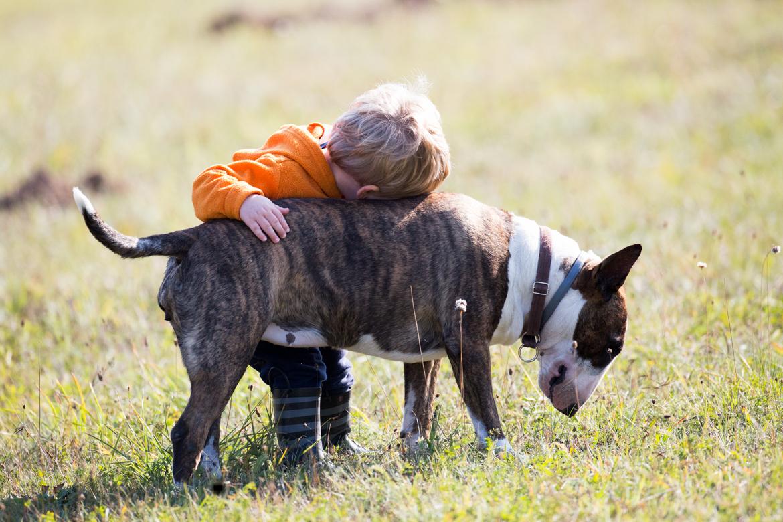 pies-przyjacielem-czlowieka-19