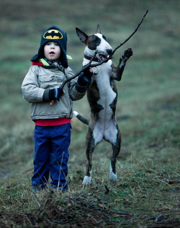 pies-przyjacielem-czlowieka-2